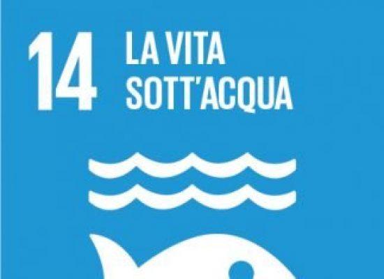 Libri in agenda: obiettivo 14, la vita sotto'acqua